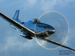 P51.Card.Stock.Airshow.Flier.2014